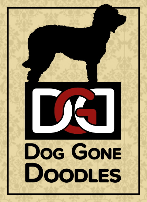 The Dog Gone Doodles logo